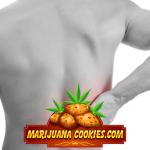 best cannabis edibles for pain