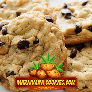marijuana cookies green crack